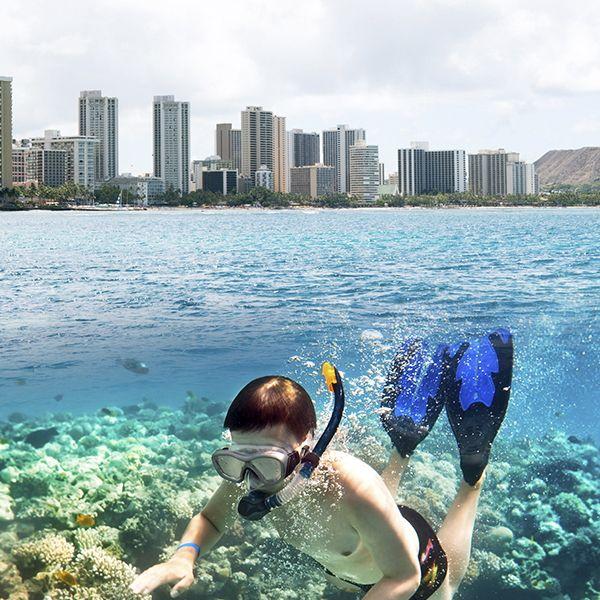 [ワイキキマリンスポーツ]  タートルシュノーケル / オアフ島 | ハワイ VIP オプショナル ツアー