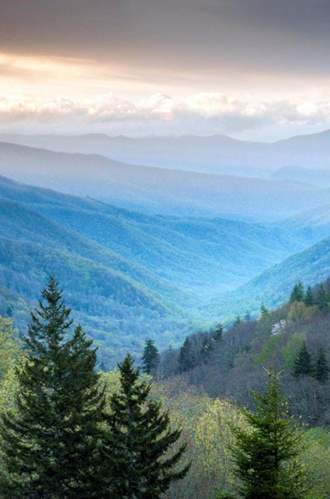 16 Must Do Hikes In Great Smoky Mountain National Park Great Smoky Mountains National Park Mountain Photography Smoky Mountain National Park