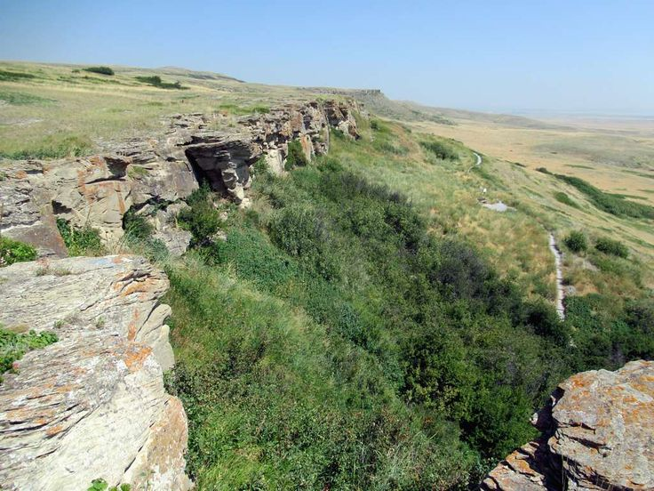 For over 6,000 years Plains Indian hunters stampeeded buffalo over the Head Smashed-In Buffalo Jump near Fort MacLeod, Alberta, Canada. The animals were then butchered at a camp below the cliffs.