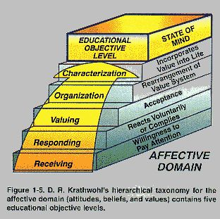 Blooms taxonomy of learning domains nursing essay
