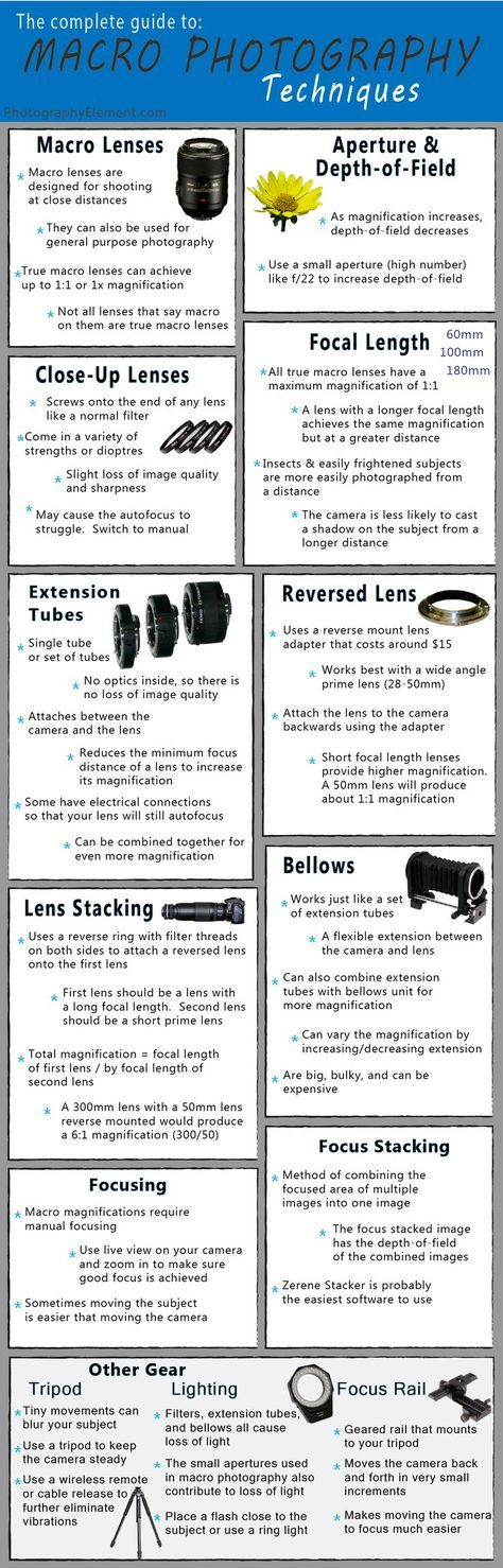 If you read my site, I'm sure you know how much I love macro photography. It can be one of the more challenging types of photography to succeed at. Here's some basic techniques and the tools required to get started. The best part is, you don't even have to buy an expensive macro lens to take great macro shots.
