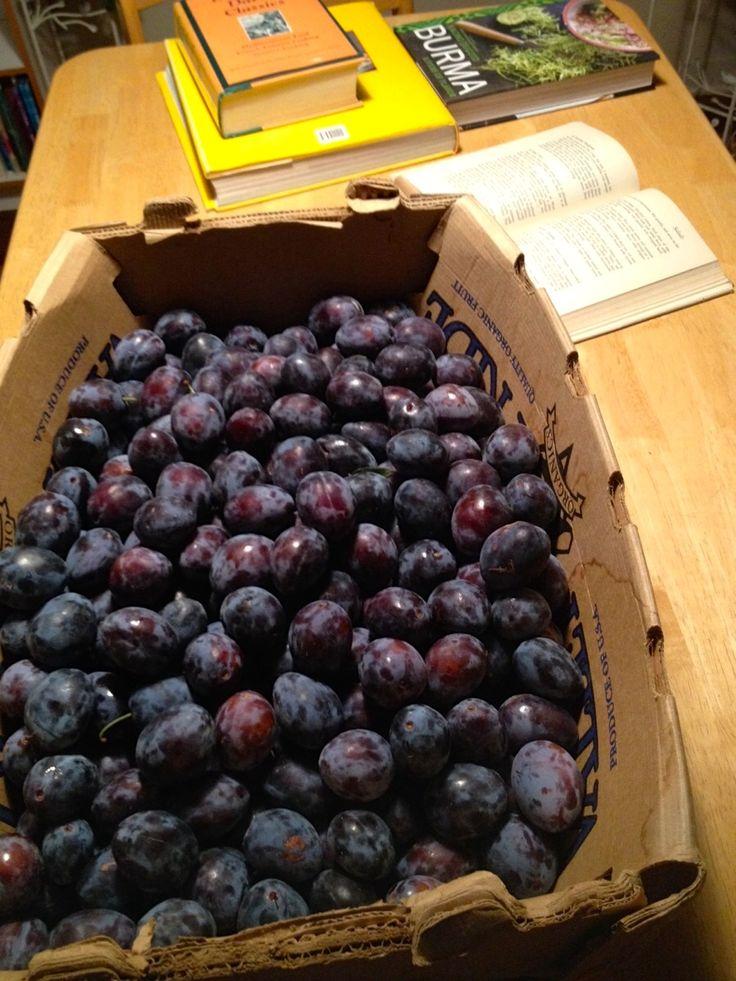 levkar: roasted prune plum paste from Culinaria Eugenius