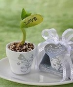 A 'Love' Plant ...sweet!