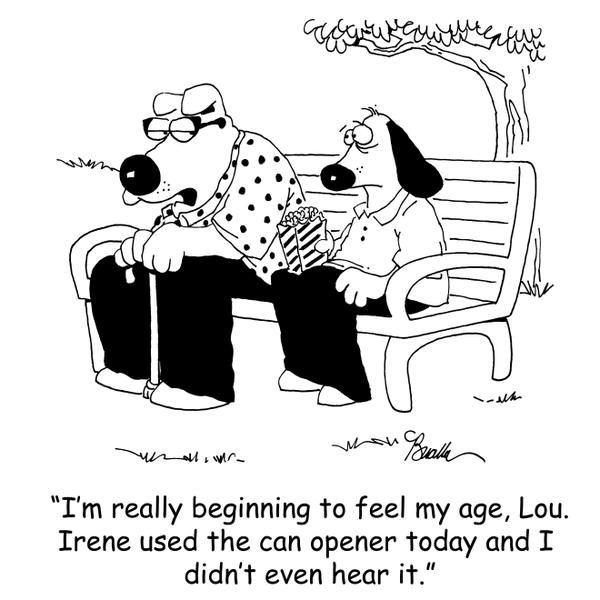 13 best jokes for the hearing impaired images on pinterest