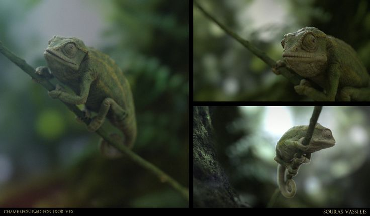 Realistic Chameleon R&D, created byVassilis Souras using 3ds Max, Vray and ZBrush.