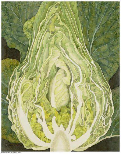 Julia Loken ~ 'Spring Cabbage', 2009 | watercolor on paper
