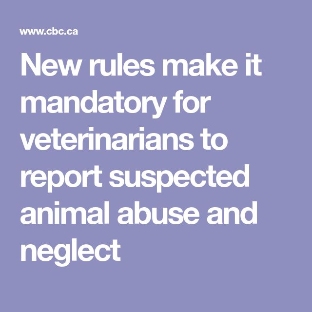 Animal Protection Act updated by provincial government. The legislation now prohibits transporting disabled animals and has stricter guidelines on animal euthanasia and slaughter.