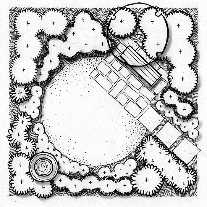 Image Result For Viburnum Plan Graphic Garden Pinterest
