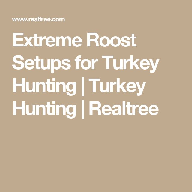 Extreme Roost Setups for Turkey Hunting   Turkey Hunting   Realtree