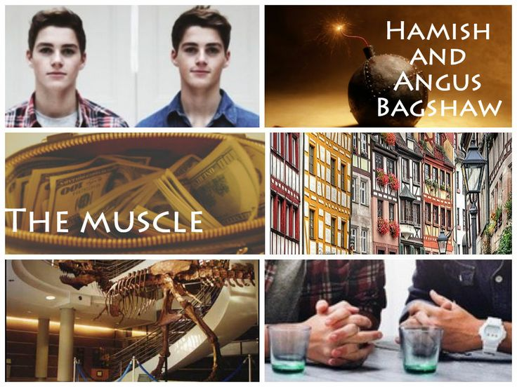 Heist Society by Ally Carter-the Crew. Angus and Hamish Bagshaw: the muscle