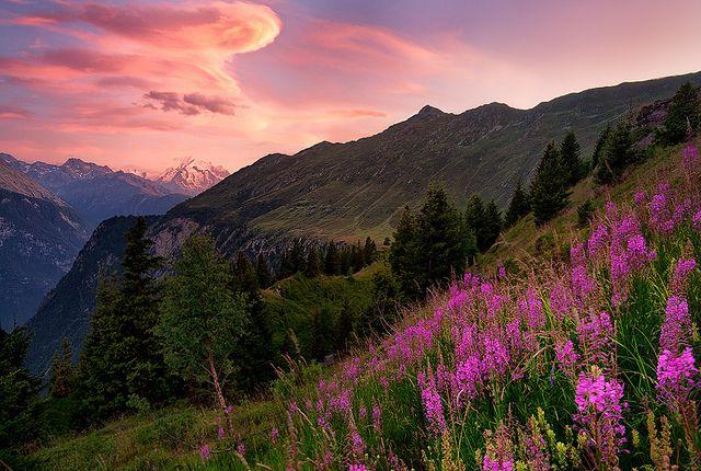 Switzerland   Belalp