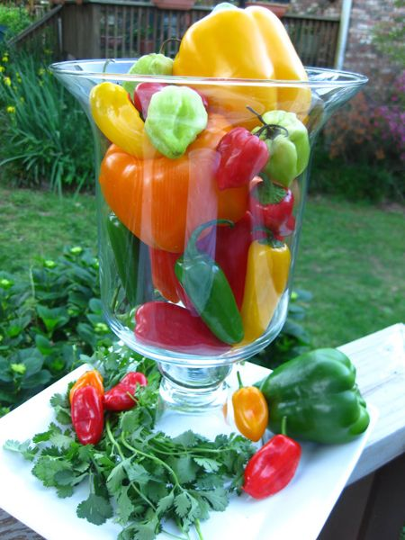 We love this simple and easy Cinco de Mayo decor. Just fill a hurricane glass with different color peppers to create this inexpensive look. www.ortega.com