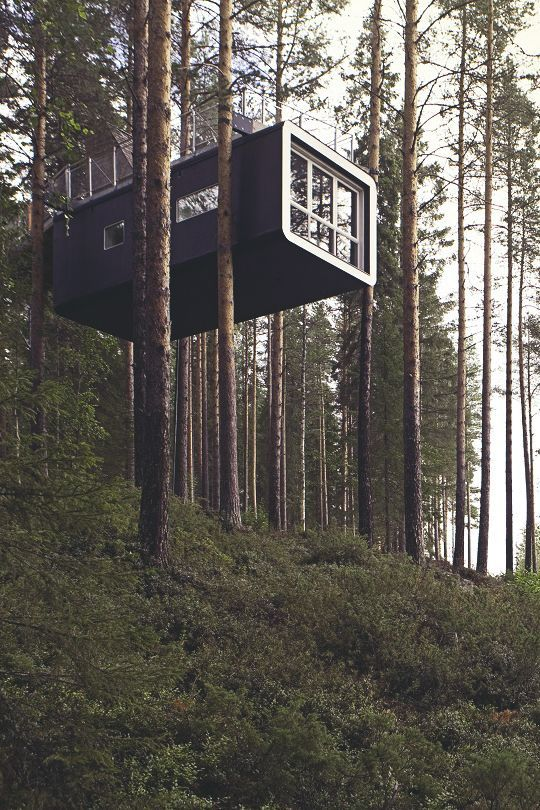 an amazing house in the trees - tree house, but designed by an architecture