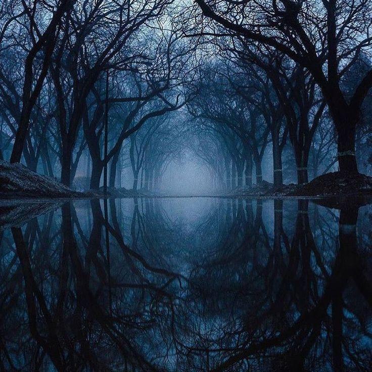 Mirror. Winnipeg, Manitoba @yoshigrams #world #natural #naturalbeauty #forest #zenlifeterritory