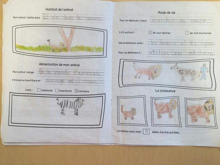 Cahier de recherche sur les animaux. Ressource gratuite