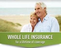 Whole Life Insurance Quotes For Children Stunning Best 25 Whole Life Insurance Ideas On Pinterest  Best Term Life
