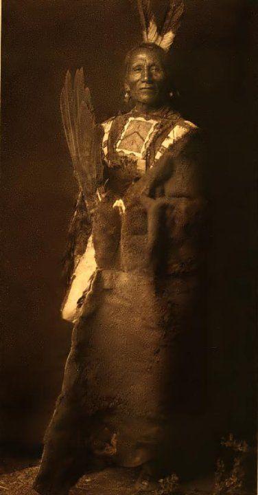 GRAY BEAR , 1908