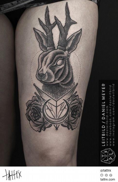 Jackalope Tattoo Tumblr 73 best Jackalope Tatt...