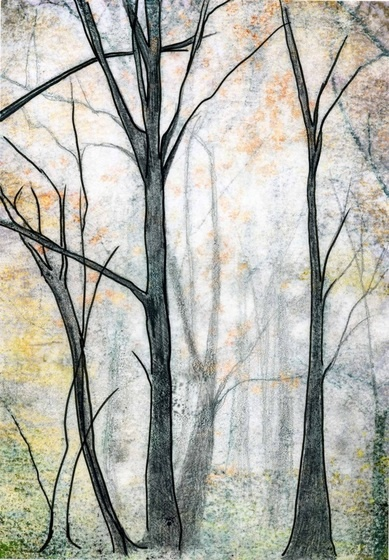 """""""One of my forest drawings"""" Not mine, Julie Shacksons'. S"""