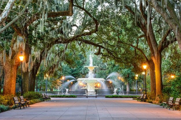 The Insider's Guide to Savannah - Life is Suite