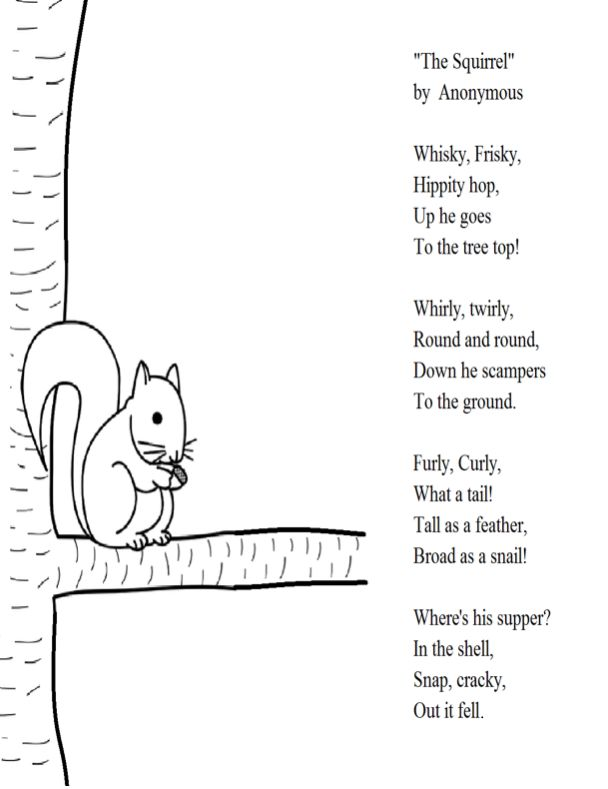 the squirrel poem for 2nd grade activities worksheets elementary schools shared reading. Black Bedroom Furniture Sets. Home Design Ideas