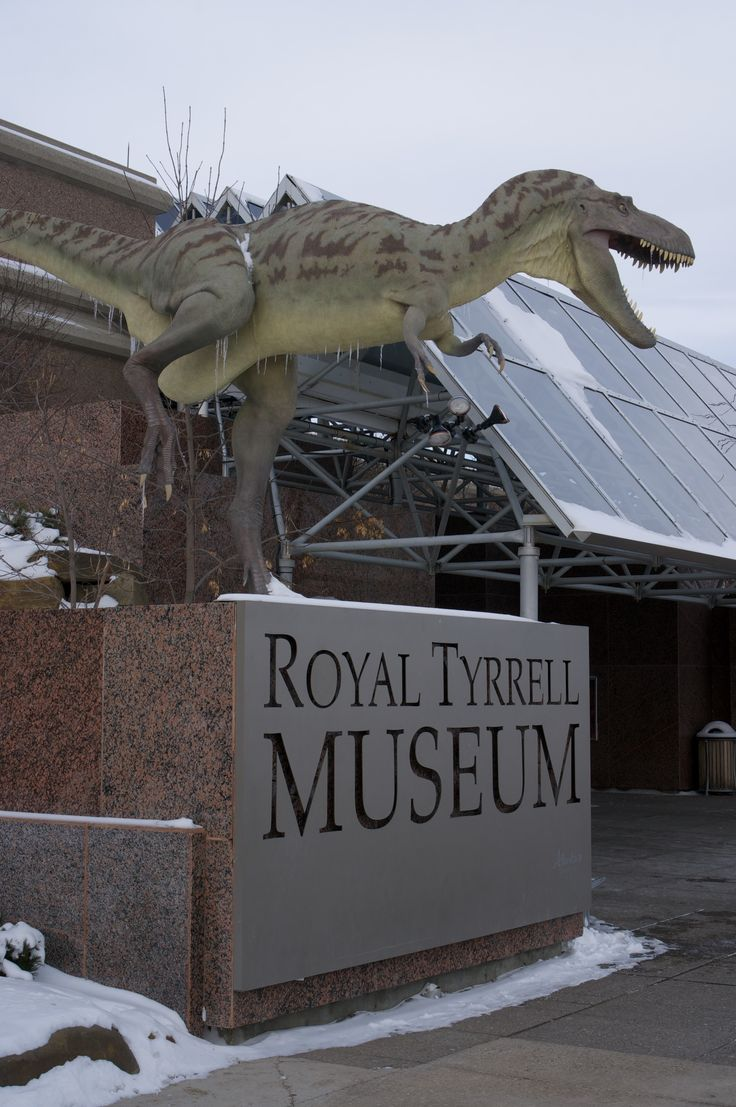 Prehistoric Trip through Alberta at The Royal Tyrrell Museum Rambling Guide to Canada