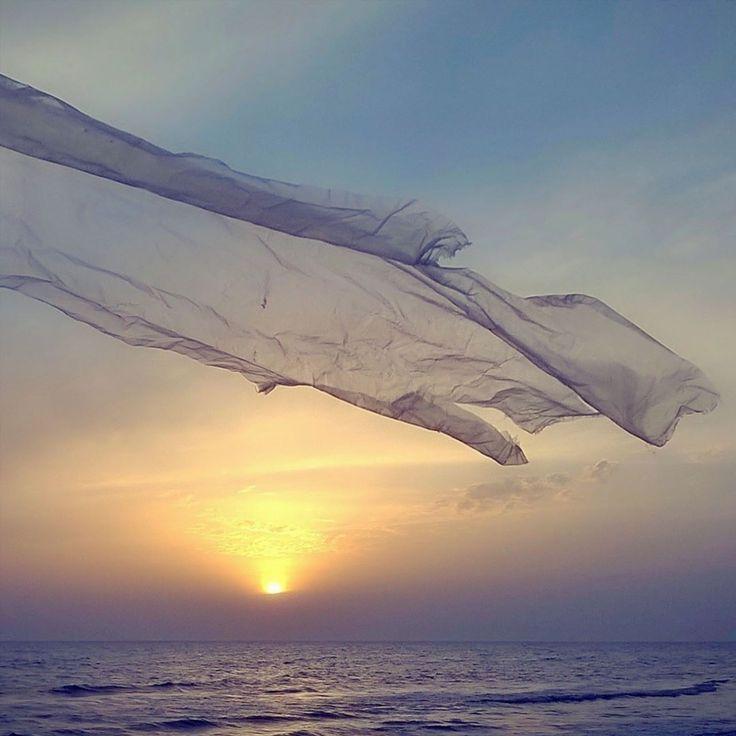 Si alza il vento bisogna vivere non c'è nemmeno il tempo per riflettere...(Jovanotti). #liveauthentic #moment #toscana_bestsunset #besttoscanapics #ig_pisa #italia_bestsunset #livefolk #vsco #igerspisa #soul_infinity_ #soft_vision #vsco_soft #toscana_super_pics #ig_tuscany_ #perlestradedellatoscana #florenceandtuscanyforyou #volgotoscana #transfer_visions #infinity_life_ #langolodellafoto #bestwaterpics_ #infinity_watershot #romantic_lights #click_vision #ba_ba_lu_ba #loves_toscana…