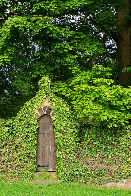 Give it a few more years and the garden door becomes a secret door... I want a secret garden in my backyard.