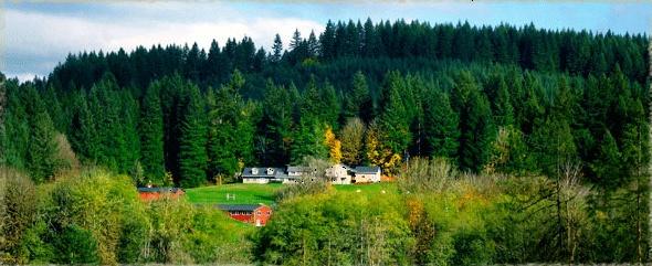 travel nursing traveling cedar