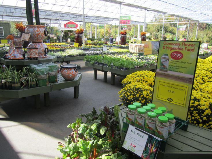 Pike Nurseries, Ballantyne, Charlotte, NC, North Carolina / Pike Nurseries    Garden Talks U0026 Other Events