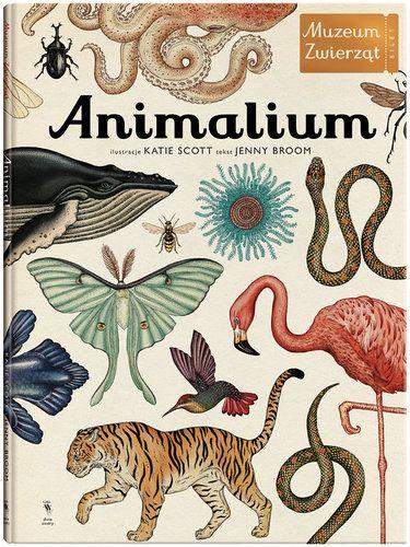 Animalium - Książki