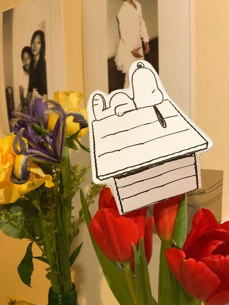 Take me home, Snoopy by NamYoon Kim - Photo 136261801 - 500px