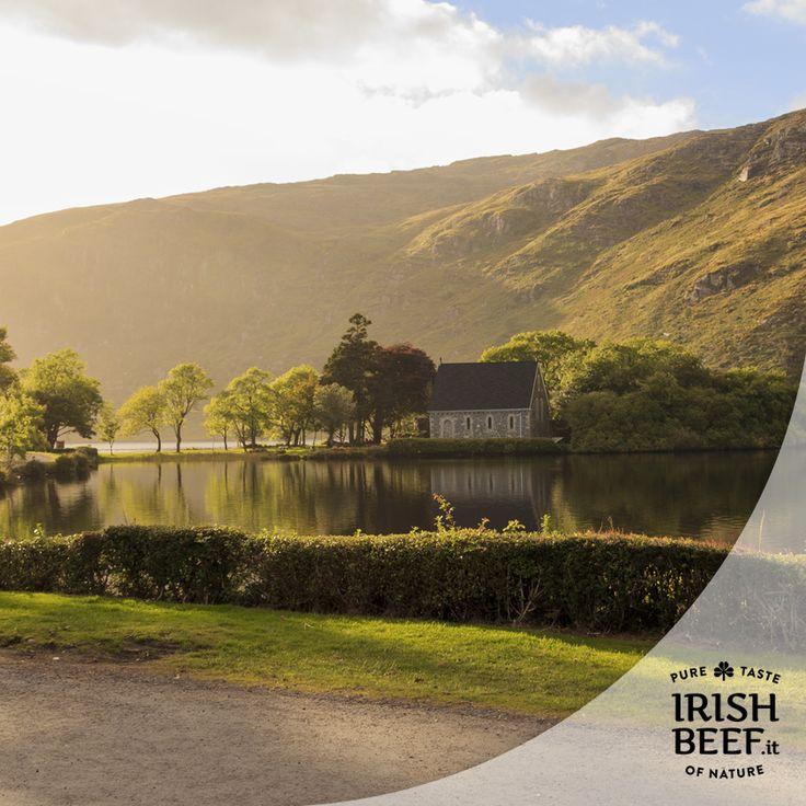 Quale miglior modo per godersi i paesaggi irlandesi se non una passeggiata nel fantastico Gougane Barra Forest Park? Non un parco qualsiasi ma bensì il primo parco forestale d'Irlanda. http://www.irlandando.it/cosa-vedere/sud/contea-di-cork/gougane-barra-forest-park/