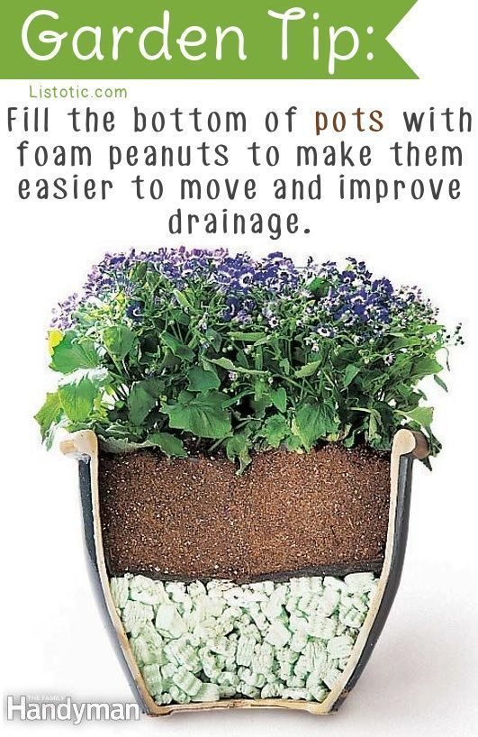 20 Insanely Clever Gardening Tips And Ideas...some really really good ideas, though a few might need some tweaking.
