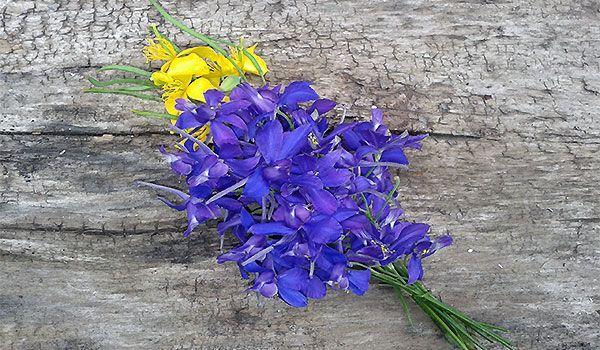букетик-сине-желтый