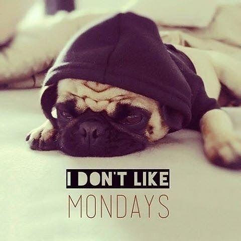 #Καλημέρα #Δευτέρα πάλι σήμερα. #Καφεδάκι και ξεκλέβουμε λίγη ώρα για να διαβάσουμε το #edityourlifemag #edityourlife Link in bio