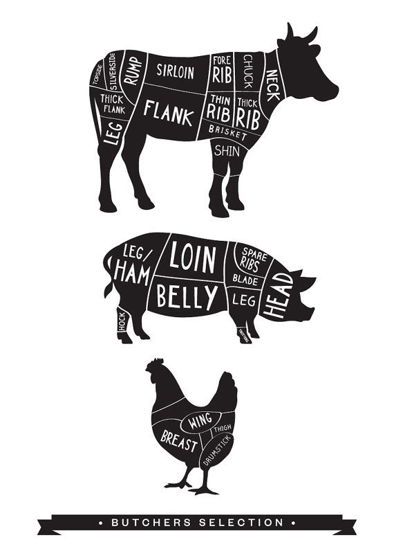 Butcher Print Butcher Meat Diagram Print for by OldEnglishCo, £15.00 Love this…
