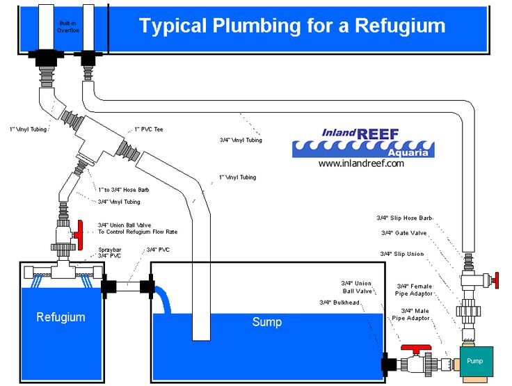 Refugium Plumb Gif  853 U00d7644