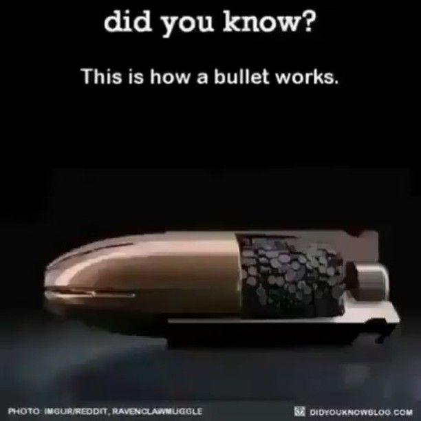 Tag someone who needs to see this   Like  Repost  Tag  Follow   @endlessboxcom https://endlessbox.com #endlessboxcom  #photooftheday #instagood #omg #hunter #badassery #hunting #tbt #ar15 #pistol #ak47 #freedom #gun #guns #merica #pewpew #happy #nra #badass #beast #glock #handguns #fullauto #wow #firearms #weapon #instamood #weapons #edc #gunporn