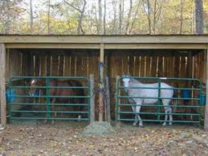 Mini horse shed
