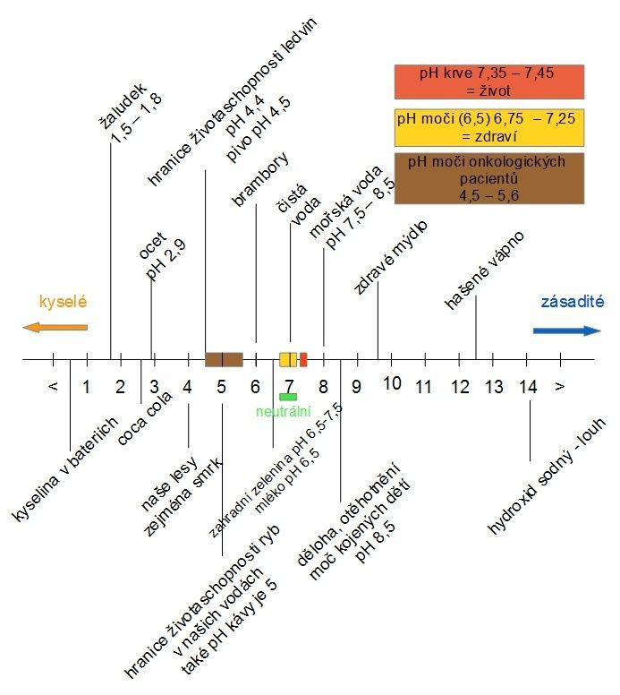 Příčiny nemocí :: celostnimedicina-mudrhulkova