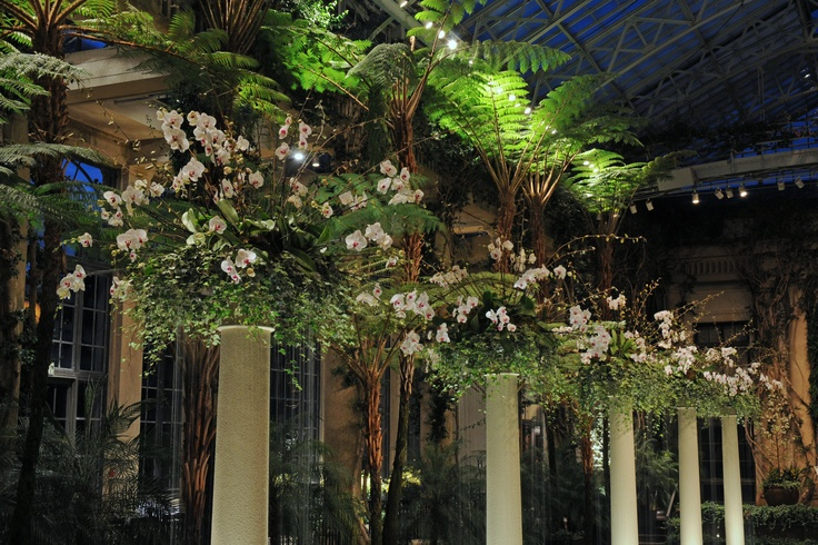 Pink #orchid columns at Longwood Gardens, 2008Orchids Extravaganza, Favorite Gardens, Orchids Columns,  Pale, Longwood Gardens, Pink Orchids, Gardens View, Private Gardens, Notable Private