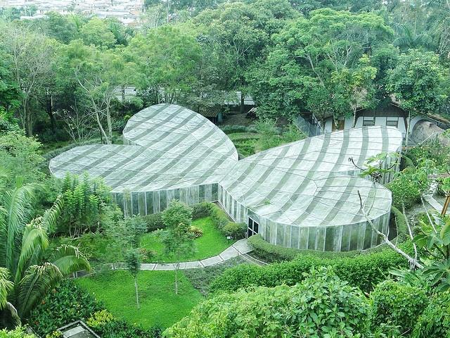 El Jardin Botanico del Quindio tiene el mejor Mariposario del Mundo