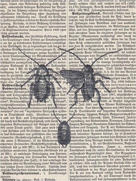 entomology.