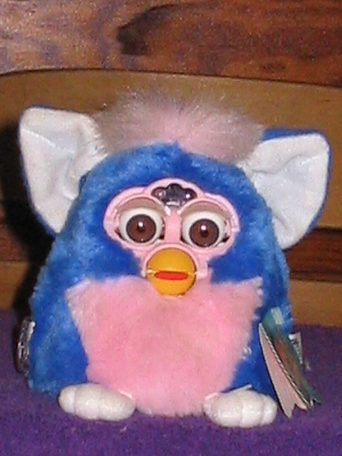 1000 Images About Furby Amp Shelby On Pinterest Toys