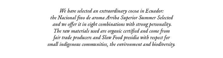 Organic Modica Chocolate
