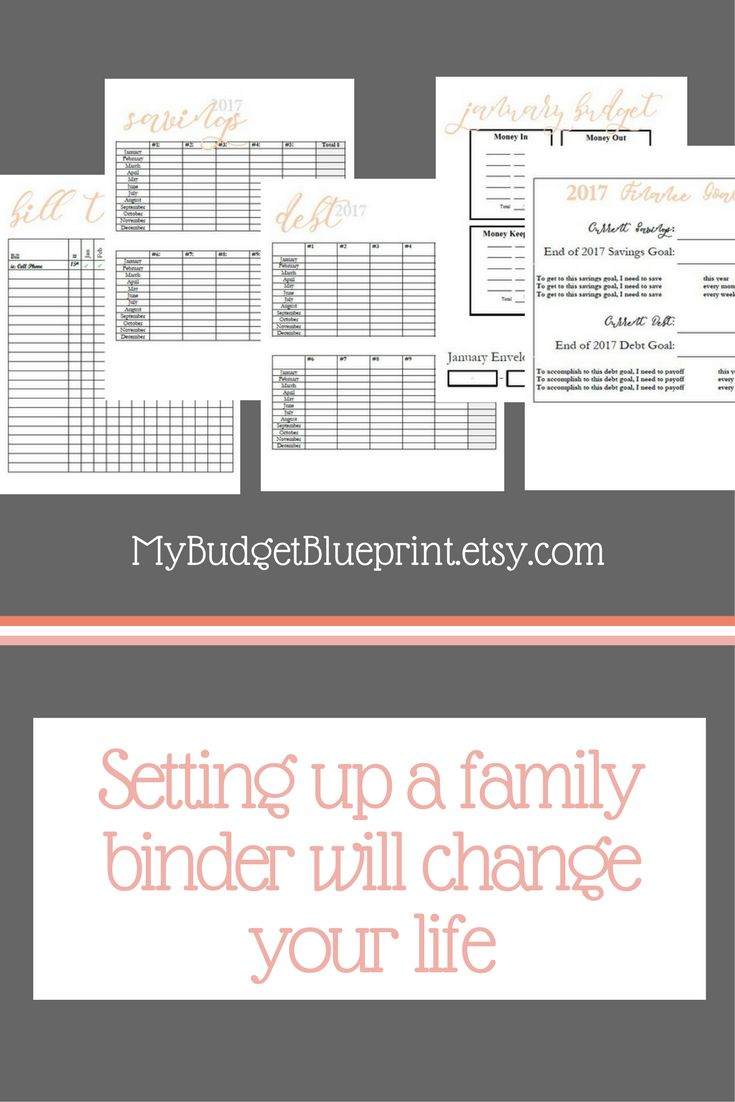77 best How to Build a PERFECT Family BINDER images on Pinterest ...