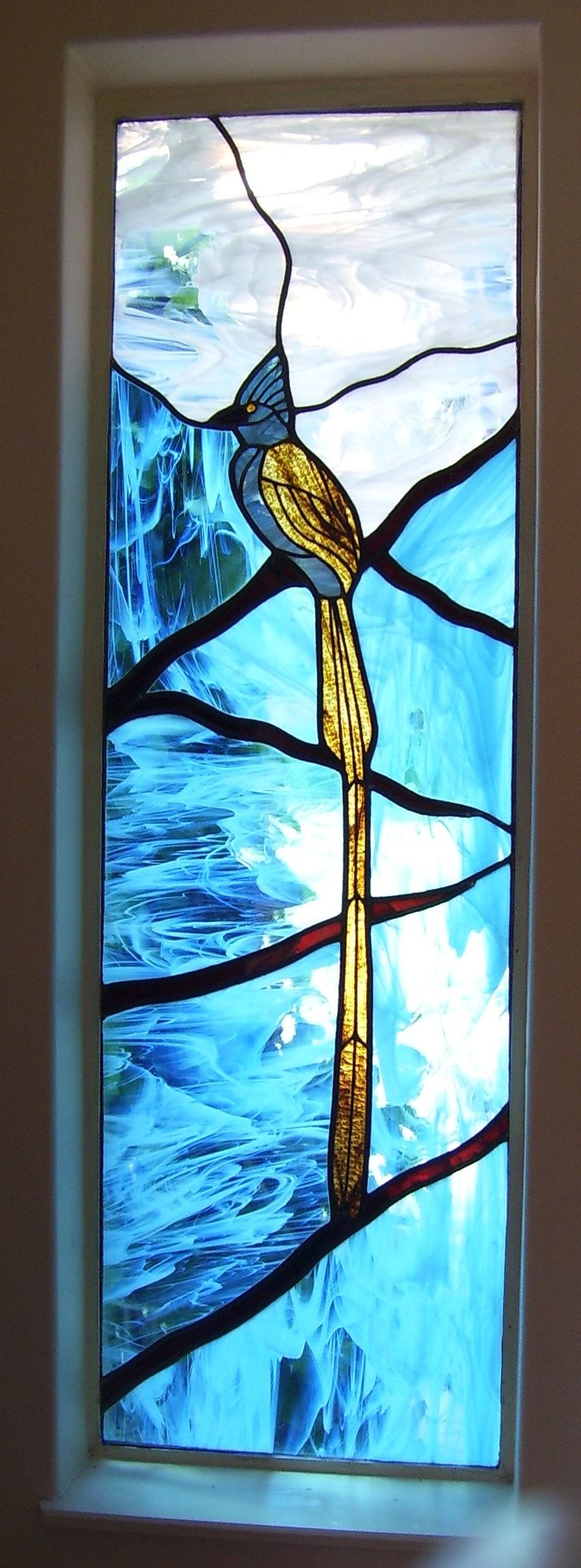 Paradise flycatcher window