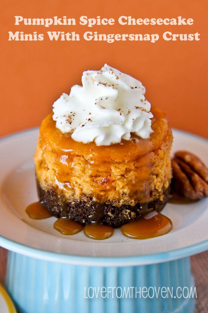 ... Pumpkin! on Pinterest | Pumpkin biscotti, Pumpkin pie oatmeal and