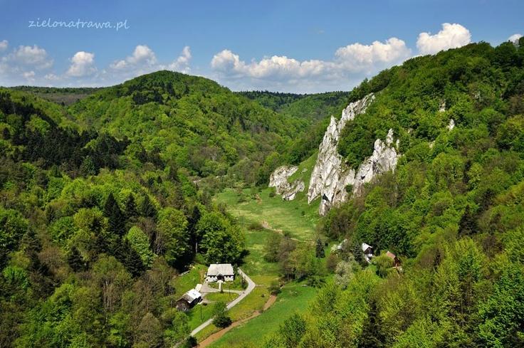 Spring in Pradnik Valey in Ojcow National Park, Poland - www.ojcow.pl